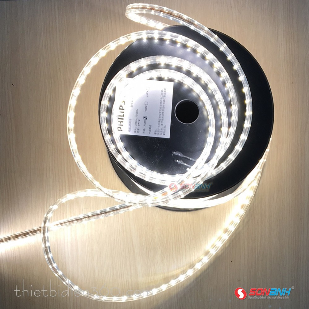LED dây 8W/m 31162 6500K - Philips
